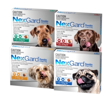 NexGard 6 Packs Group